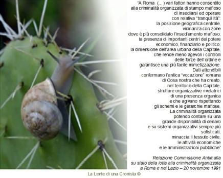 Relazione Commissione Antimafia sulla criminalità organizzata nel Lazio, novembre 1991